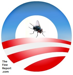 Obama logo with fly