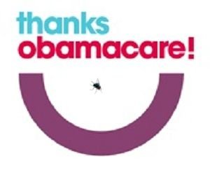 Thanks Obamacare with fly