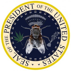 Obama seal by rock in the USSA