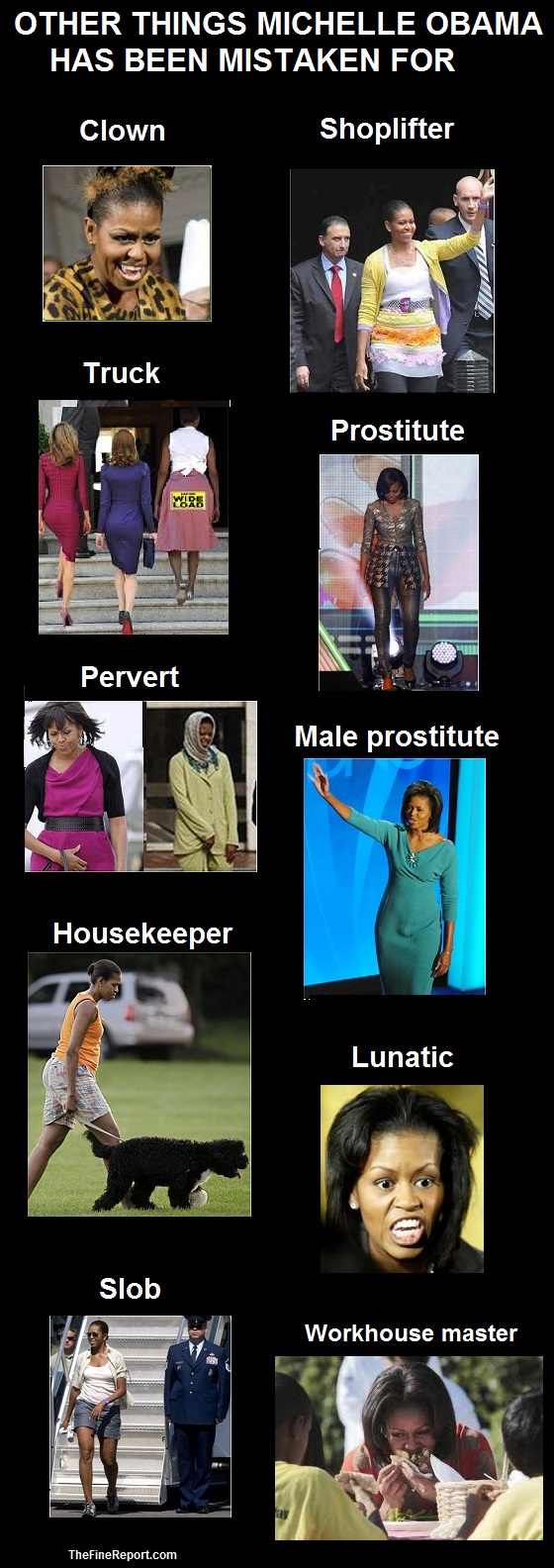 Michelle Obama other things mistaken for