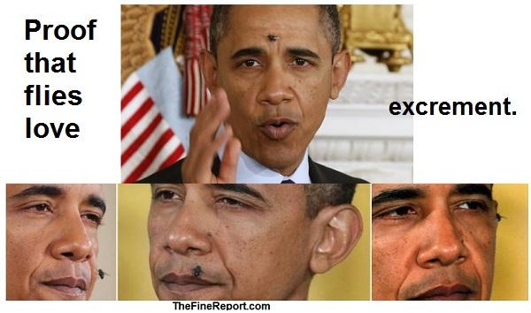 Obama flies2