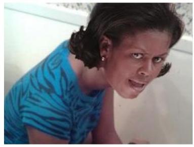 Michelle Obama toilet